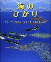 モリー・バング&ペニー・チザム『海のひかり』さくまゆみこ訳