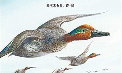 鈴木まもる『わたり鳥』