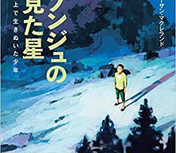リ・ソンジュ『ソンジュの見た星』表紙
